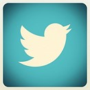 New York Times reports Twitter to add photo filters