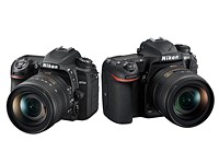 Nikon D7500 vs Nikon D500: Which is better for you?