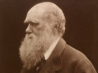 200th birthday of Julia Margaret Cameron to be celebrated with major exhibition