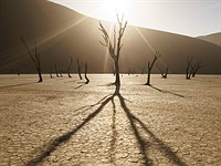 Quick Look: Parallelism in Landscape Photography