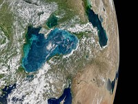 Turning the Black Sea blue: NASA's image of the day shows phytoplankton bloom