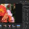 Fujifilm's Capture One Express vs Adobe Camera Raw