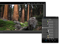 The Control Room app lets you control Lightroom from your smartphone