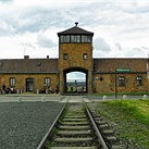 Auschwitz Museum urges visitors to not be disrespectful by taking selfies on the train tracks