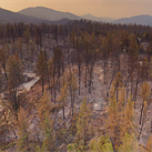 California wildfire devastation revealed in series of aerial images