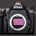 The Nikon D750 vs D780: Should you upgrade?