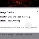 Google Images adds creator and credit metadata to photos