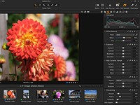 Adobe Camera Raw vs. Capture One Express Fujifilm: A worthy free contender