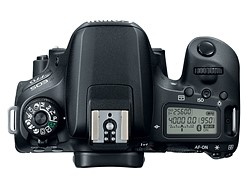 Buyer's Guide: Canon EOS Rebel T7i (800D) vs EOS 77D vs EOS 80D 3