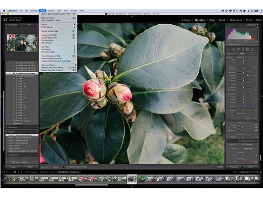 11 Photoshop alternatives for photographers at every level 2