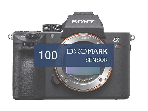 Sony a7R III ties Nikon D850: Best mirrorless full-frame camera ...