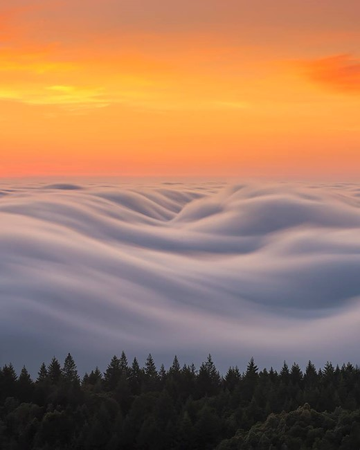 Fog waves: photographer Nick Steinberg captures nature in motion 11