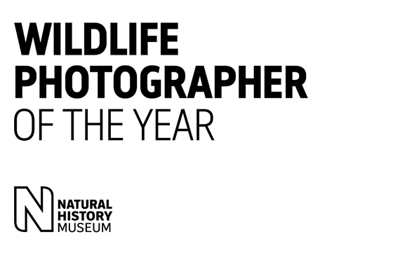 Winners of the 2020 Wildlife Photographer of the Year competition
