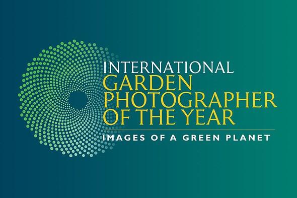 IGPOTY Macro Art Photo Contest Winners