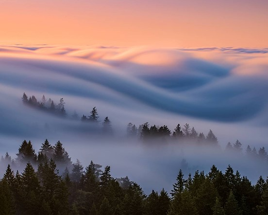 Fog Waves: Capturing Nature in Motion