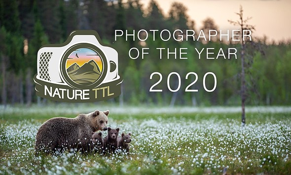 Inaugural Nature TTL Photographer of the Year 2020 winners