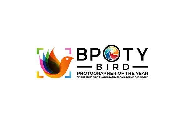 2021 Bird Photographer of the Year finalists