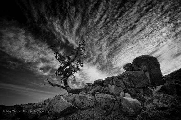 Jory Vander Galien's dramatic Southwestern landscapes