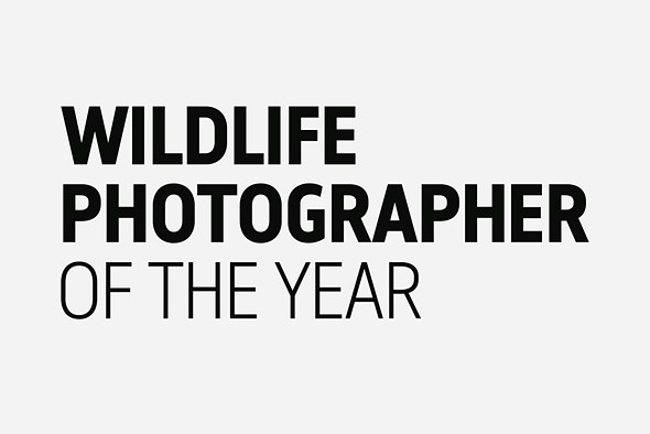 Wildlife Photographer of the Year People's Choice Award winners