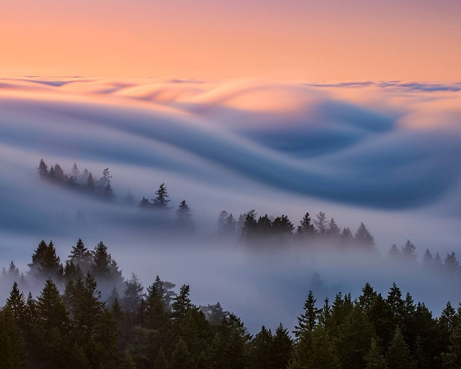Fog waves: photographer Nick Steinberg captures nature in motion