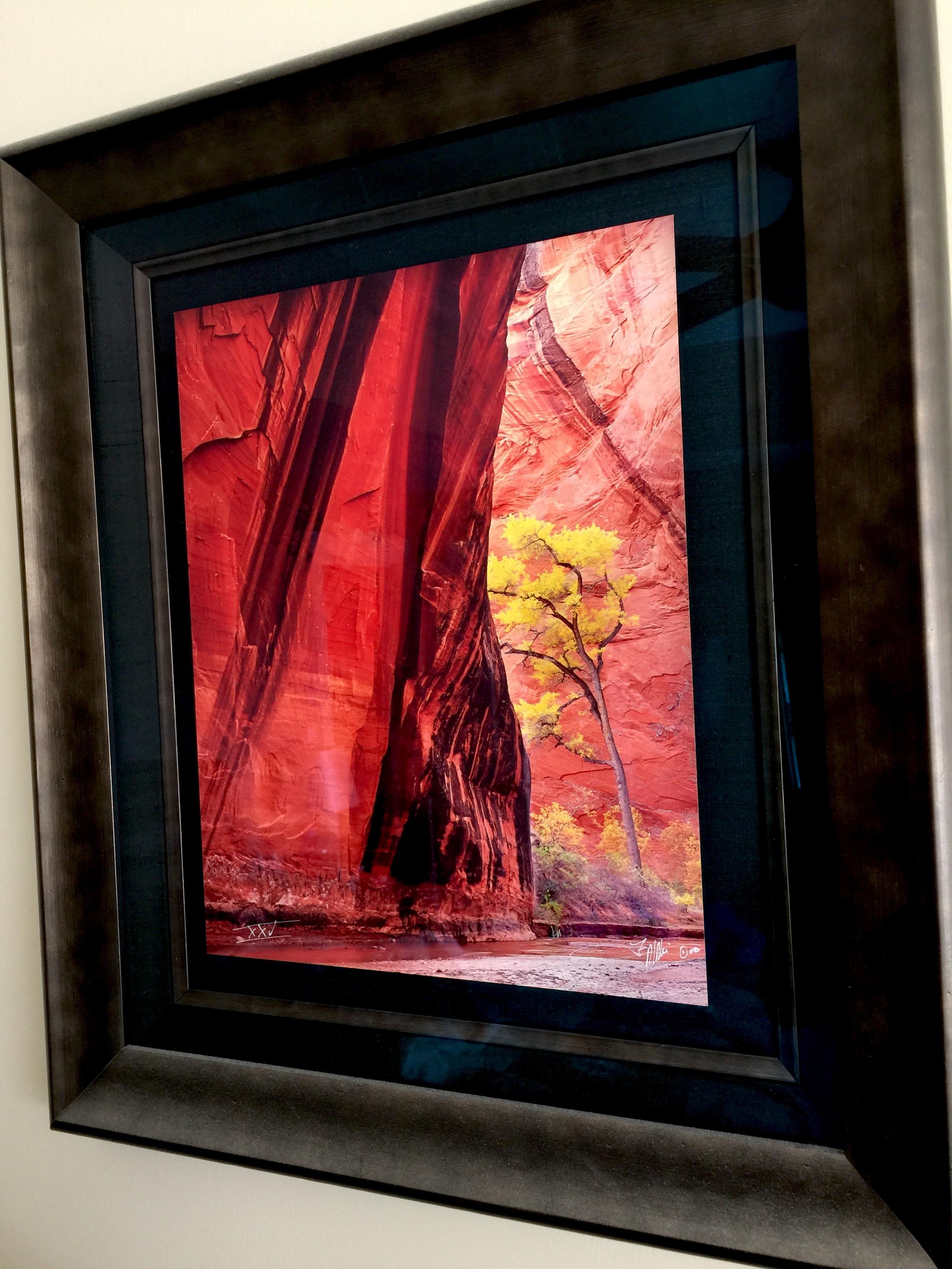 Ikea Ribba frames -- no glass: Open Talk Forum: Digital Photography ...