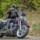 Harleysoftail