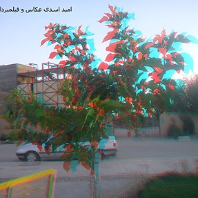 picture 3d anaglyph