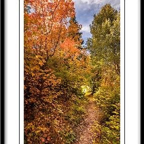 Fall hike photography