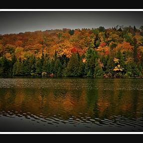 Quebec Falls Colors