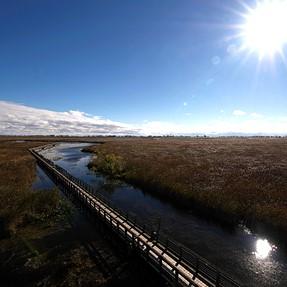 Point Peele National Park