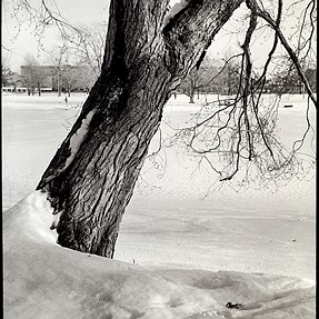 winter on the Charles River two image from film and M