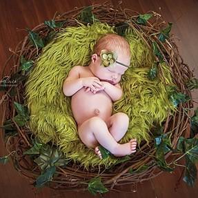 Lighting for newborn photo shoot in birds nest