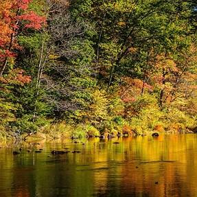 Autumn scene for c&c