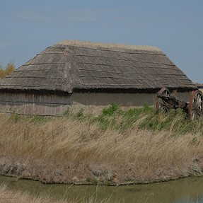 Farm houses in 19th century in the wetlands..