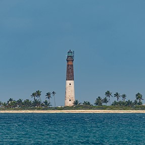 D500 Goes to the Dry Tortugas