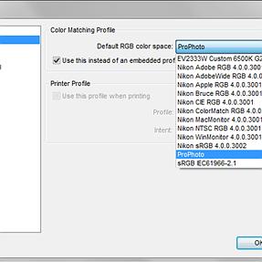 Capture NX-D and ProPhoto color space