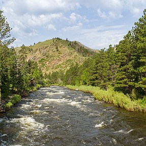 Hiking Grey Mountain in Poudre Canyon