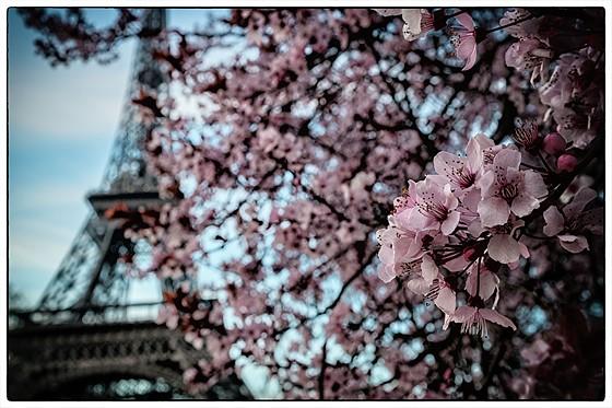 Погода в париже 25 апреля 2016