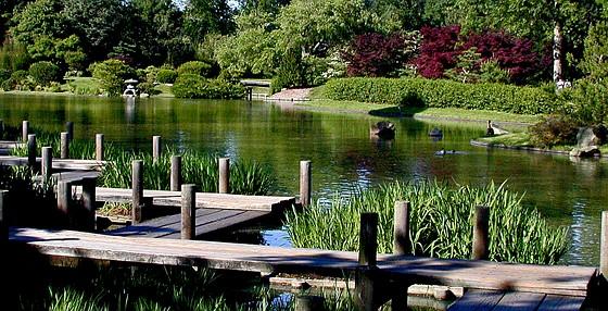 Re Entry St Louis Botanical Gardens Sony Cyber Shot Talk Forum