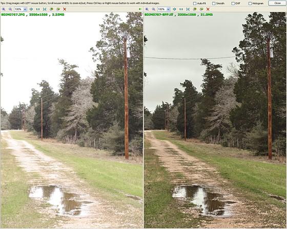 SD1M JPEG vs SPP vs RD comparisons : Sigma Camera Talk Forum