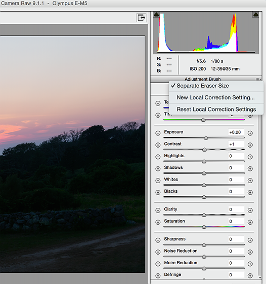 How do i reset the adjustment brush in psd RAW: Open Talk