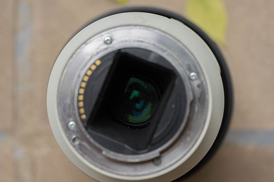 0abdbd3b6ae Rumoured Nikon and Canon full frame mirrorless for Photokina  Sony ...