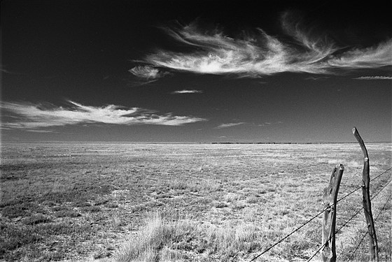 Digital Black And White Landscape Photography