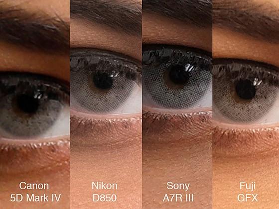 Sony A7r Iii Test Image I Need Some Answer Sony Alpha