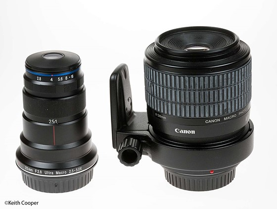 Laowa 25mm testing: Macro and Still Life Photography Forum: Digital