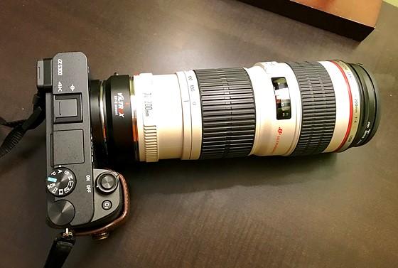 Canon 70-200 f4: Sony Alpha / NEX E-mount (APS-C) Talk Forum