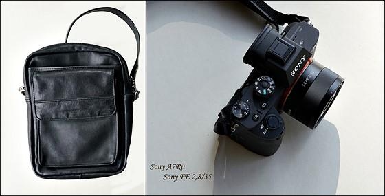 Re: General Purpose Walk Around Lens Choice: Sony Alpha Full Frame E ...