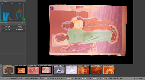 LUTs for negative conversion: Photographic Science and
