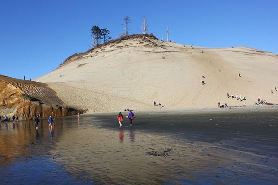 Sandboarding: Canon Rebel (EOS 200D-800D) Talk Forum: Digital
