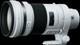 Sony 300mm F2.8 G SSM II